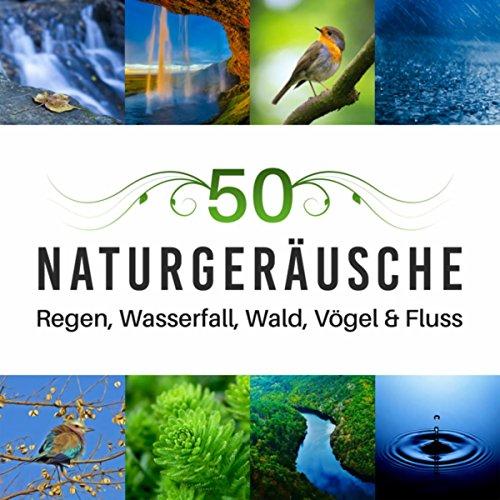 50 Naturgeräusche (Regen, Wasserfall, Wald, Vögel & Fluss für Yoga Meditation Musik, Muskelentspannung mit Entspannungstechniken)