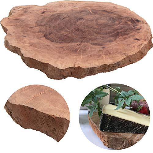 LS-Design XL Mango Schneidebrett Echt-Holz Baumscheibe Ø 28-34cm Vesperbrett Schneidbrett