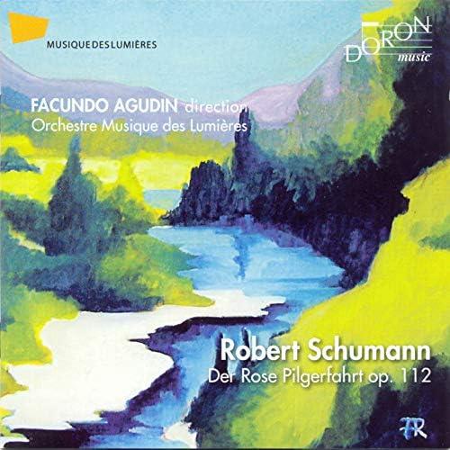 Facundo Agudin, Orchestre Musique des Lumières