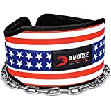 DMoose Fitness Dip Belt with Chain for Weightlifting, Pullups, Powerlifting, and Bodybuilding Workouts, Long Heavy Duty Steel, Comfortable Neoprene Waist Support