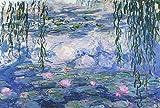elegjhf 1000 piezas Puzzle Monet Water Lilyjigsaw Puzzlefor Wall Decoration Gift75.5x50.5cm