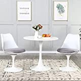 3 Pieces Dining Table Set, Mid-Century Modern Tulip Dining Room Table and 2...