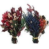 MILISTEN 2 Stück Echte Getrocknete Blumen Kit Pflanze Herbarium für Kunsthandwerk DIY Seife Kerze...