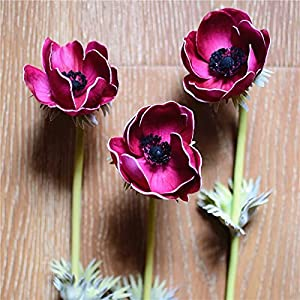 Artificial and Dried Flower Blue Anemones Natural Real Touch Flowers Single Stem for Silk Wedding Bridal Bouquets, Centerpieces, Decorative Flowers, Cake D – ( Color: Rose )