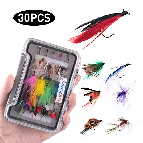 LotFancy Fishing Flies Assortment, 30 PCS Dry...