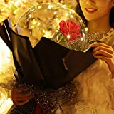 toyuugo LED Light Transparent Balloon with Rose Flower Bouquet LED Luminous Bobo Ball Rose Bouquet Wedding Birthday Party Celebration Decoration,Gift for Valentine's Day Girl's Birthday
