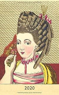 2020: Journal 2020 - Une Page par Jour / Agenda / Écriture de journal/ Journal Gratitude / Journal de famille / L'art de la femme des dames françoises, Legros de Rumigny (French Edition)