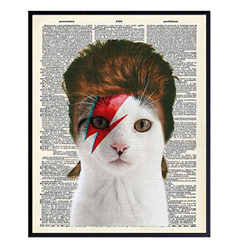 David Bowie Cat Wall Art - 8x10 Funny Upcycled Dictionary Cat Wall Decor for Vet, Veterinarian Office, Home, Bedroom - Unique Gift for 70s, 80s Punk Rock Music, Ziggy Stardust Fans