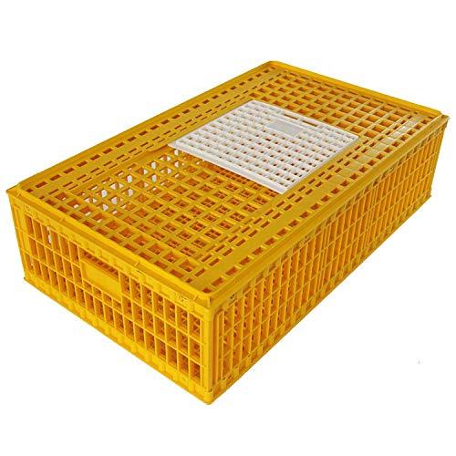 Geflügeltransportbox