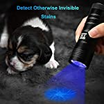 UV Torch, TechRise 12-Led LED UV Flashlight Pets Blacklight Dogs/Cats Urine Detector, Ultraviolet Flashlight Find Dry Stains on Clothes, Carpets or Floor 9