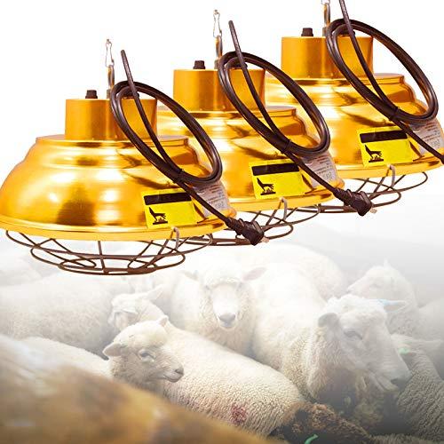 DFGENLY Calentador de Gallinero, Lámpara de Calor para Mascotas para Aves de Corral, Temperatura Regulable 200W-400W, Lampara Calor Animal para Granja Familia, Bombilla Calor Cachorro