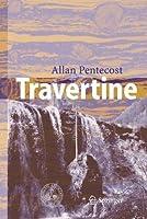 Travertine by Allan Pentecost(2005-09-01)