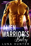 Alien Warrior's Baby (Scifi Alien Romance) (Zoran Warriors Book 2)