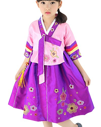 FANCYKIDS Girls Toddler Korean Hanbok Traditional Outfit Dress Costume (2 to 3 Years Old, Purple)