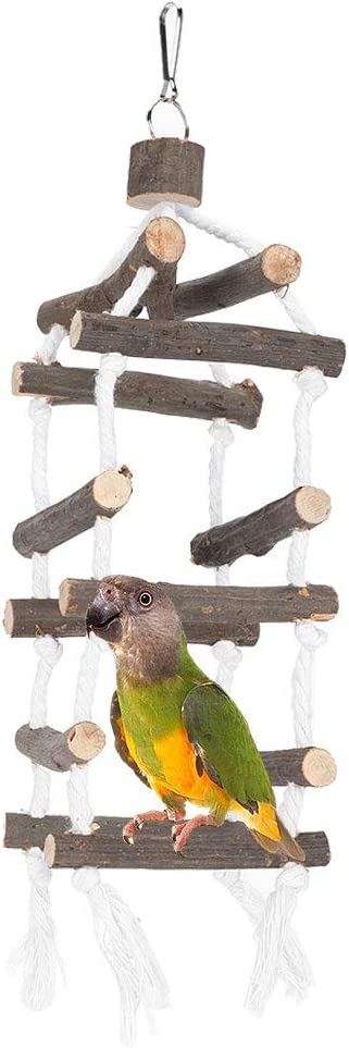 Sacramento Mall Challenge the lowest price of Japan qing niao Bird Parrot Toy Block Wood chew with Natural