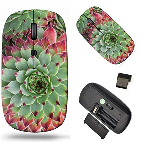 Wireless Computer Mouse 2.4G with USB Receiver, Laptop Mouse Cordless Portable and Silent Click, 1000 DPI for Office and Home, PC Laptop Computer MacBook, Image ID: 31642063 Sempervivum Hirtum