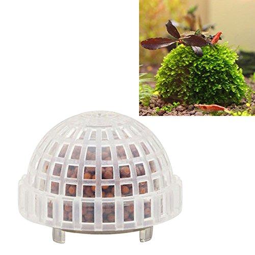 Cold Toy Natürlicher Mineralwasser-Moos-Ball für Aquarium Crystal Red Shrimp-Aquarium Heiß