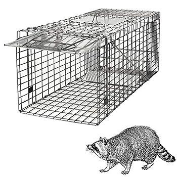 animal live trap