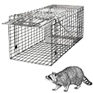 HomGarden Live Animal Cage Trap 32'' Steel Humane Release Rodent Cage for Rabbits, Stray Cat, Squirrel, Raccoon, Mole, Gopher, Chicken, Opossum, Skunk, Chipmunks, Groundhog Squire