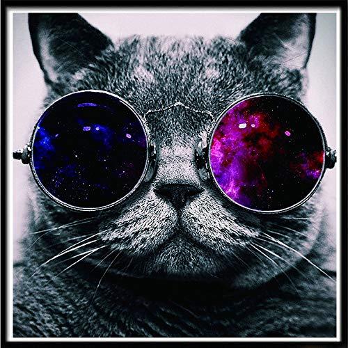 ZXXGA 5D Kit De Pintura De Diamante para Gatos,Gato con Gafas Diamond Painting 30X30Cm,Cristal Bordado De Punto De Cruz Regalo del Día del Niño
