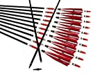 TTAD 12PCS Red Turkey Feather 31 inches Carbon Arrows Replacement Tips Targeting...