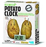 Potato Clock DIY Green Science Engineering Lab
