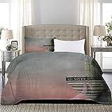 UNOSEKS LANZON - Juego de ropa de cama con diseño de torre de estilo medieval y balcón y rosa hiedra horror impresión cómoda ropa de cama que protege tu edredón rosa gris, tamaño completo