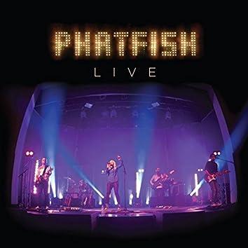 Phatfish (Live)