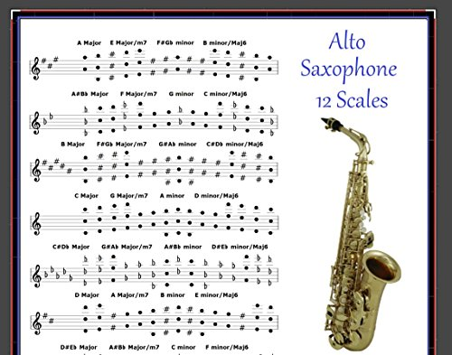 ALTO SAXOPHONE POSTER - 12 SCALES FOR SAX