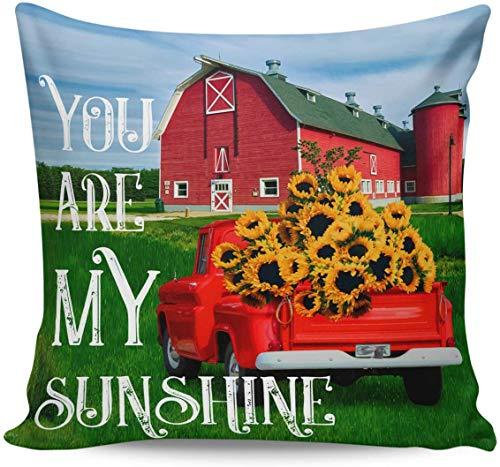 beibao Fodere Decorative per Cuscini - You Are My Sunshine Farm Ruck Girasole Federa Ultra Morbida Fodera per Cuscino Quadrato Comodo per Divano Camera da Letto, 16'x 16'