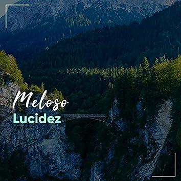 # 1 Album: Meloso Lucidez