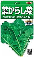 サカタのタネ 実咲野菜2873 葉からし菜 ツケナ 00922873