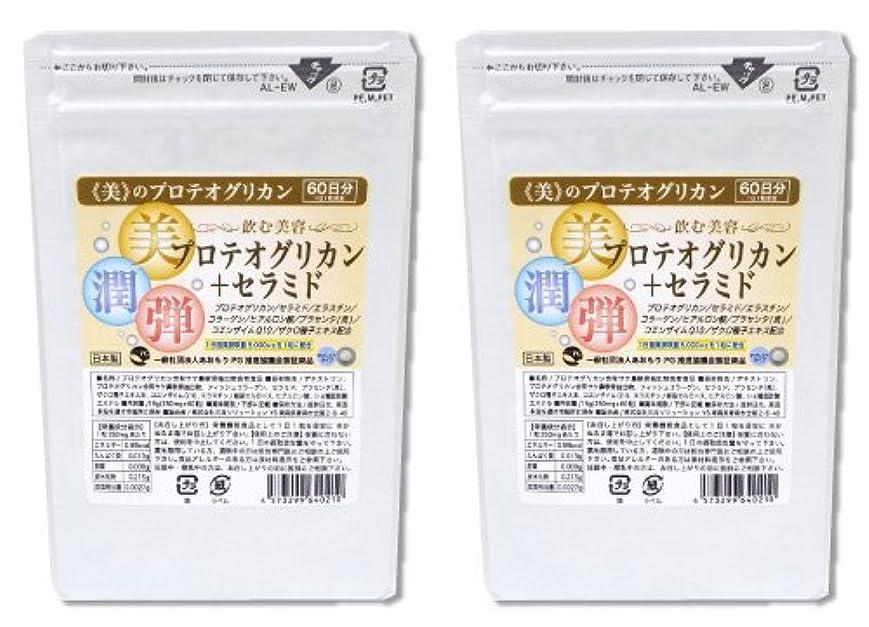 症状さらに許可プロテオグリカン+セラミド 2袋セット 120日分 ?飲む美容? プロテオグリカン セラミド エラスチン ヒアルロン酸 馬プラセンタ ザクロ コエンザイムQ10配 潤い 保湿で人気