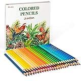 FanVean Matite Colorate Set,50 Pezzi Set Matite Colorate da Disegno Matite Matite da Disegno in Legno,Ideali per Colorazione Adulti, Artisti e Bambini