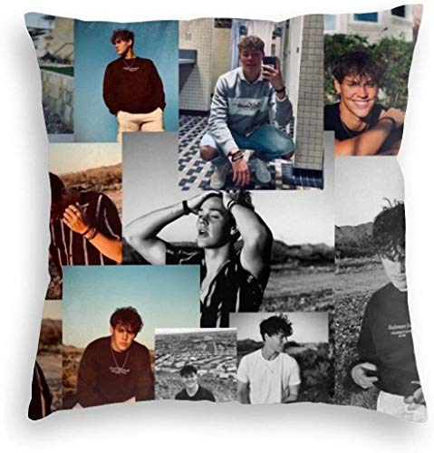 DH-MS - Funda de almohada de terciopelo con collage Noa-H Bec-K para cama, sofá, sala de estar, 45,7 x 45,7 cm