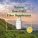 Psyllium Husk Seed Powder Capsules, 240 Capsules - 725 mg per Serving, Made with Non-GMO & Gluten Free psyllium Husk - Soluble Fiber Supplement by LuRoot #3