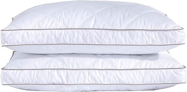 Puredown 天然鹅绒羽绒枕睡觉用羽绒枕 100 全棉枕套羽绒王 2 件套