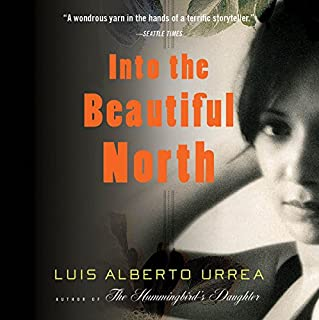 Into the Beautiful North cover art