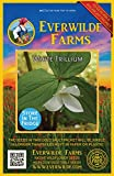 Everwilde Farms - 40 White Trillium Native Wildflower Seeds - Gold Vault Jumbo Seed Packet