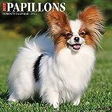 Just Papillons 2022 Wall Calendar (Dog Breed)