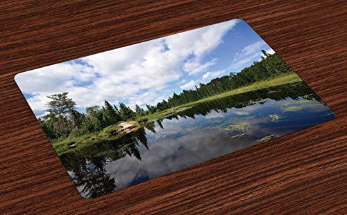 Esteras de lugar de Minnesota, paisaje de la naturaleza virgen salvaje de los bosques gruesos y reflexiones de nubes en el río, manteles individuales de tela lavables para el comedor Decoración de la