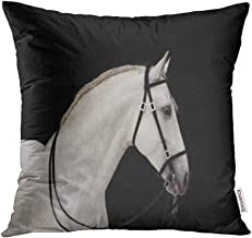 Emvency 18x18 Inch Throw Pillow Covers Decorative Case Horse White Andalusian Stallion Black Head Western Bridle Animal Beautiful Cover Square Pillowcase Cushion Cases Print On Two Sides