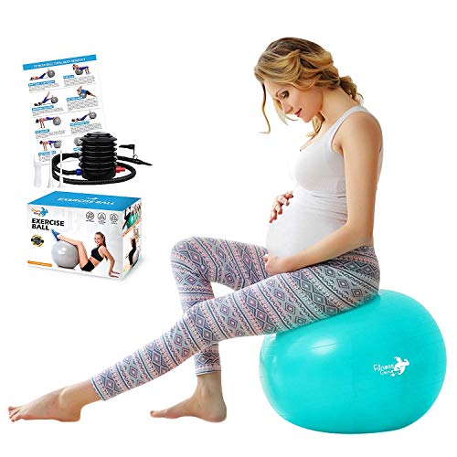 Birthing Ball Pregnancy – 65cm Anti-Burst Eco-Friendly Material Maternity Labour Yoga Ball with Foot Pump Exercise Balls, Heavy Duty Gym Ball with Exercise Guide | Home Gym Exercise Fitness Equipment