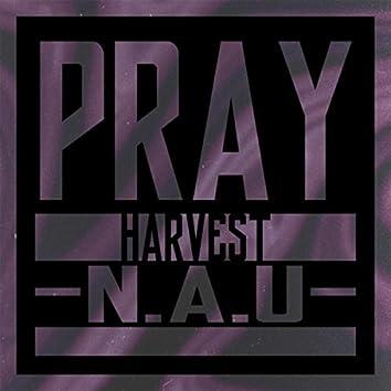 Pray (feat. N.A.U.)