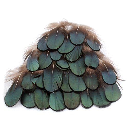 TININNA Lot de 50 plumes vertes en bronze, pour le jardin, décoration de bricolage, accessoire pour cheveux