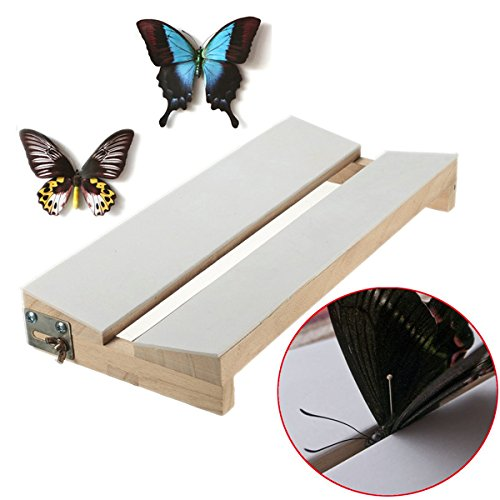 Brccee AC New Adjustable V Shape Insects Butterfly Spreading Mounting Board Solid Wood Wings
