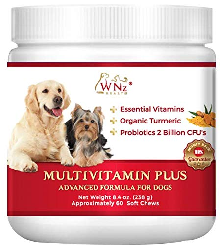 WetNozeHealth Vitamins for Dogs - Canine Multivitamin Supplement with Organic Turmeric and Probiotics for Large and Small Dogs, Chicken Flavor - 60 Soft Chews