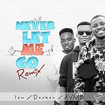 Never Let Me Go (feat. Dzoken & AVMB) [Remix]