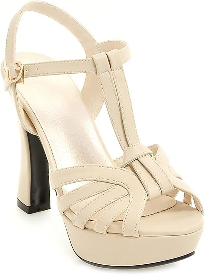 MISTU Women's Cheap mail order shopping Fashion Selling T-strap Peep Sandal Heel High Platform Toe