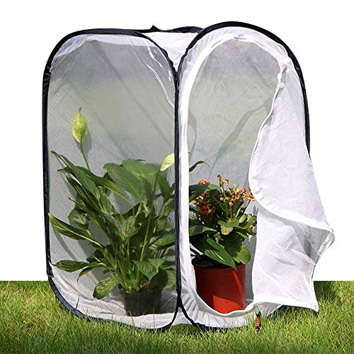 Duokon Grande Gabbia ventilata Durevole Portatile Pieghevole Farfalla Gabbia Allevamento Camera